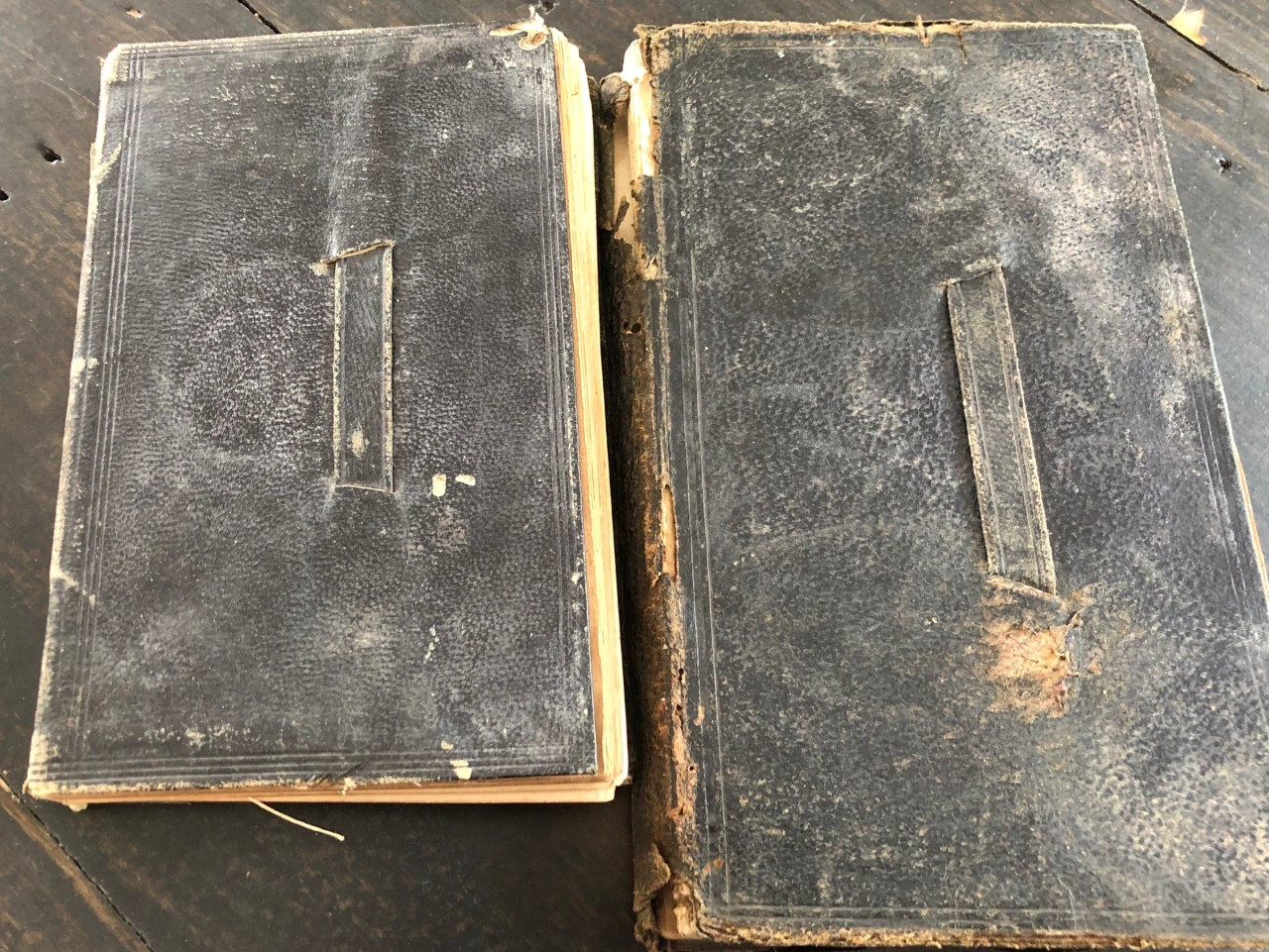 Image for 1859 and 1860 Handwritten Diaries of a Young, Rural American Methodist Preacher, Preaching in the Wiltshire Circuit and a Kansas Circuit Prior to the Civil War